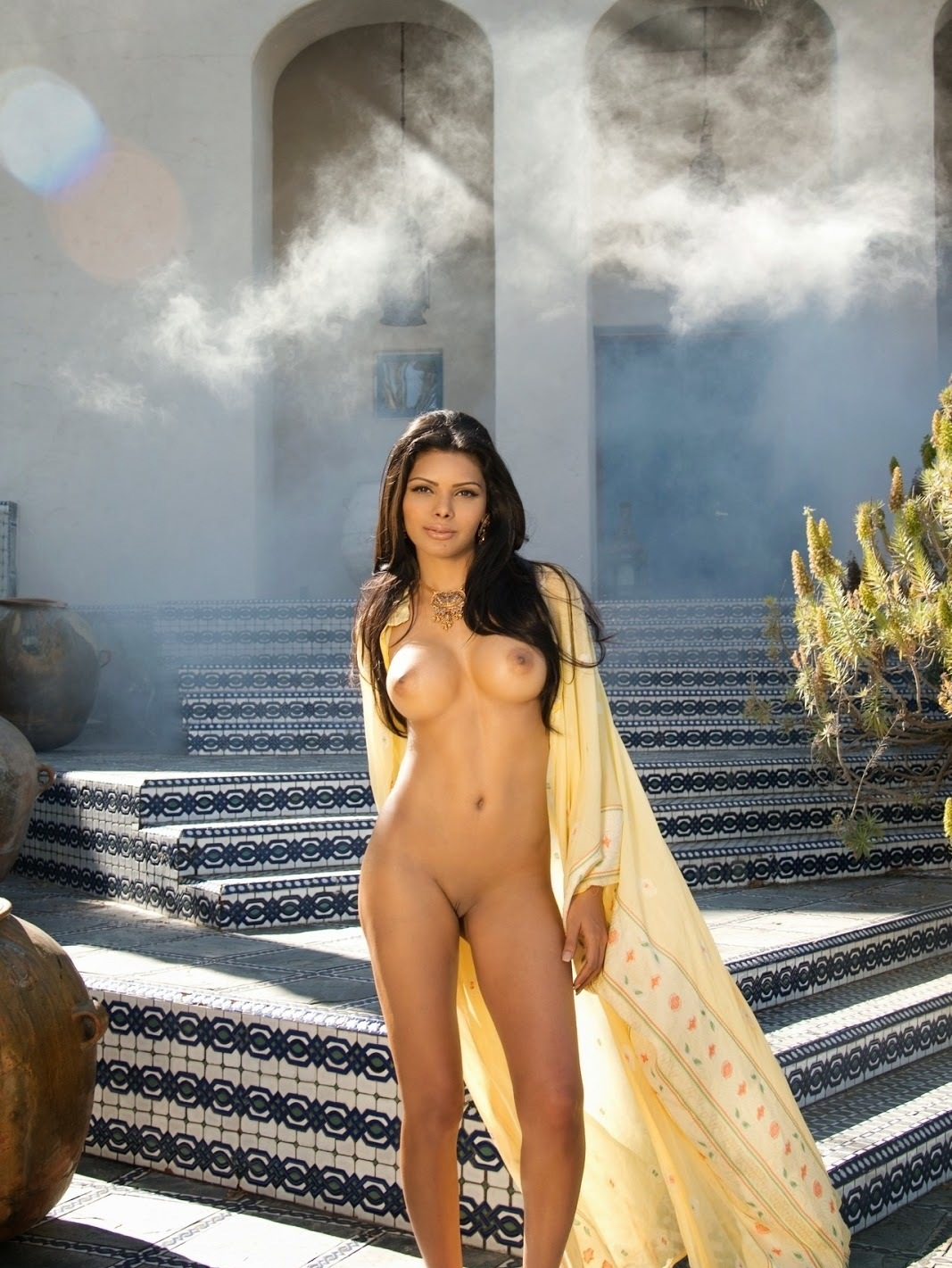 18  Sherlyn Chopra Nude Pics Exposed-5397